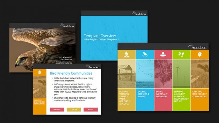 portfolio-ppt-audubon